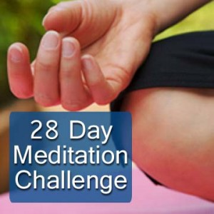 Join the 28 Day Meditation Challenge