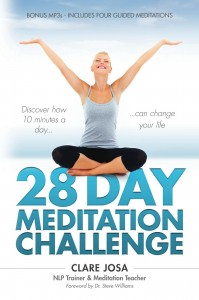 28 Day Meditation Challenge Book - ISBN 978-1908854315