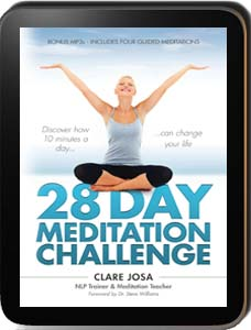 28 Day Meditation Challenge Online Course