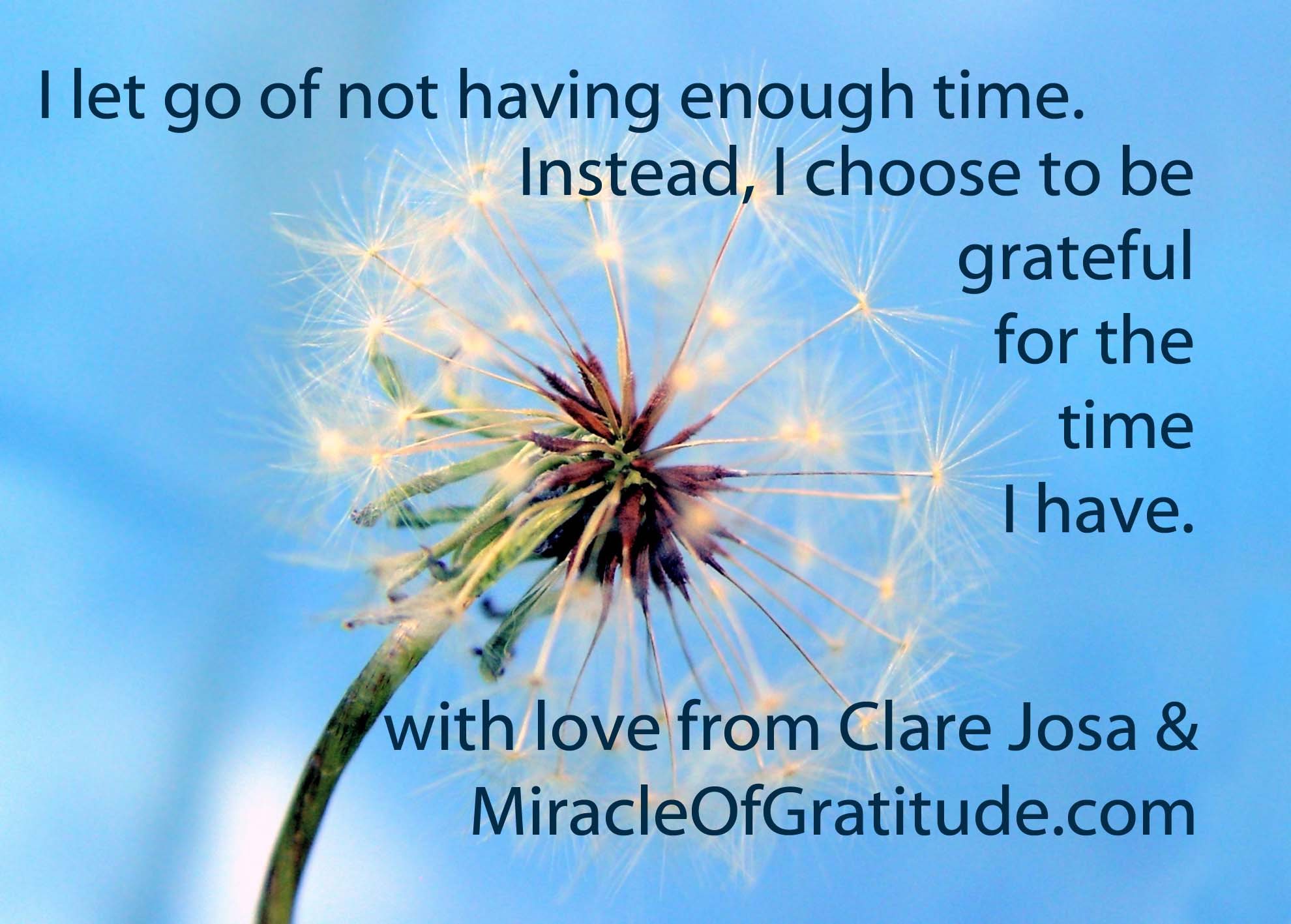 2013-10-28-clare-josa-gratitude-screen-saver