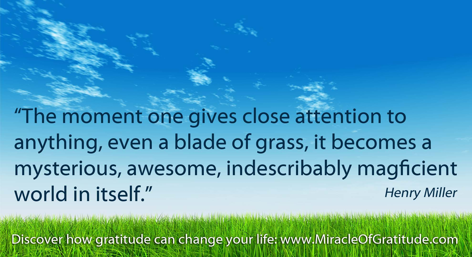 Inspirational Gratitude Quotes: Download This Weeks Gratitude Screen Sav.