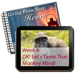 Week 4 - Let's Tame That Monkey Mind!