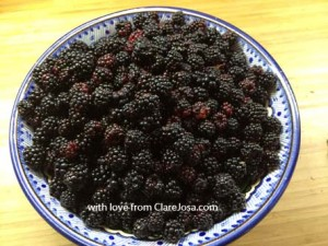Recipe ideas for autumn blackberries