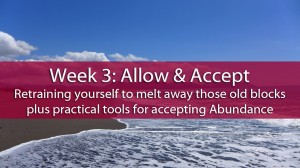 Week 3: Allow & Accept