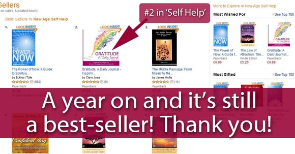 Gratitude A Daily Journal Best-Seller