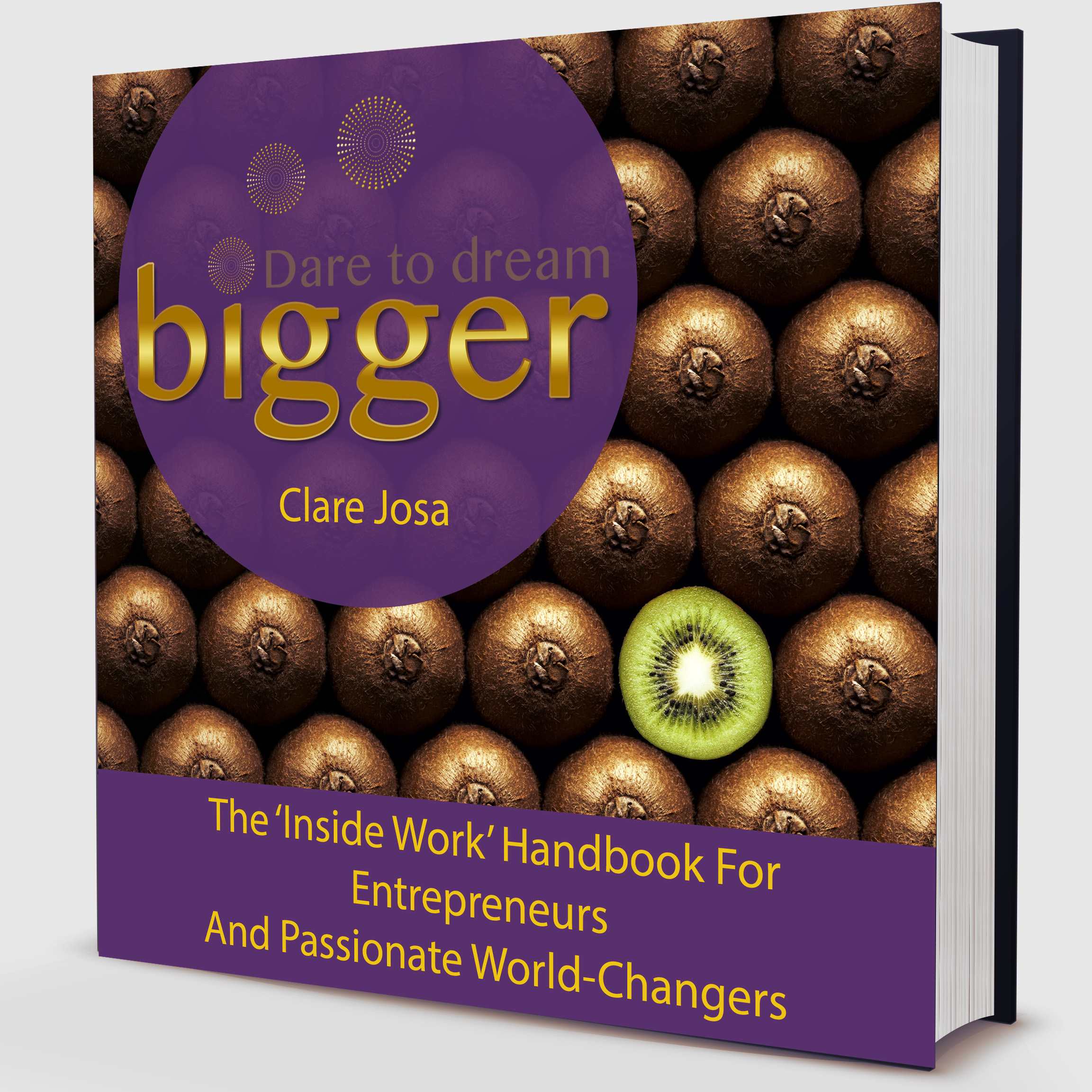 Dare to dream bigger handbook http://www.daretodreambigger.biz/book